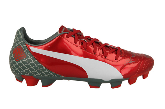 EVOPOWER 4.2 DRAGON GRAPHIC 103437 01